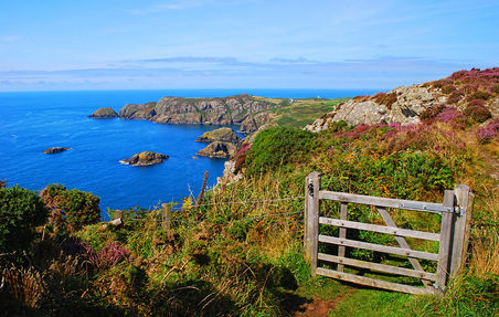 Picture of Wales Coast Path, Strumble Head, Pembrokeshire