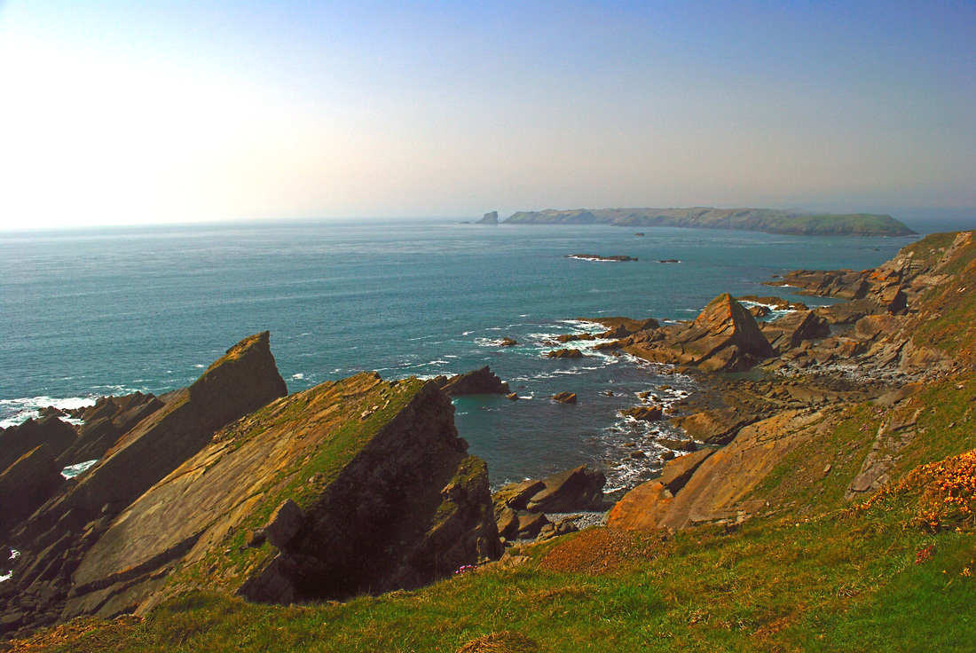 Picture of Skomer Island from the Wales Coast Path